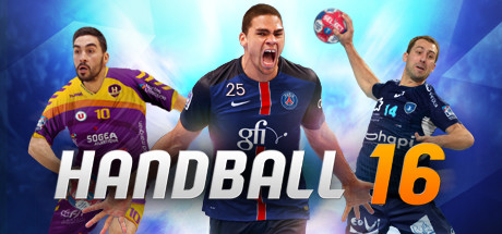 Handball 16 Pc Cover