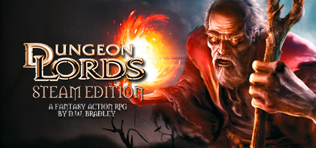 Dungeon Lords Steam Edition Pc cover