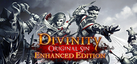 Divinity Original Sin Enhanced Edition  Cover